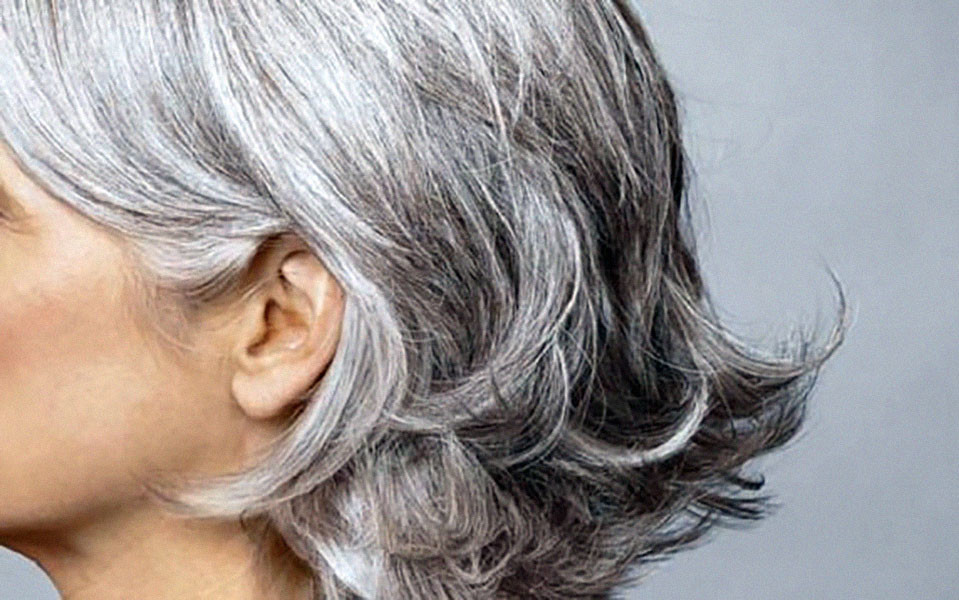Is There a Way to Reverse Grey Hair? • Asia Roxy No Down Time